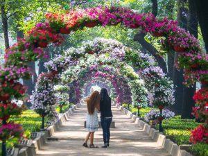 Festival de las Flores de Invierno